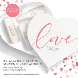 Love Sassoon professional